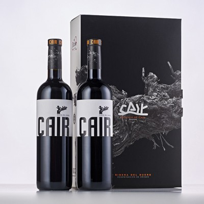 CA2-2